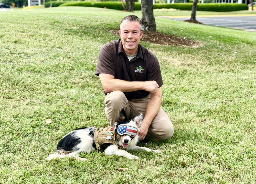 Vince with goose-hazing border collie